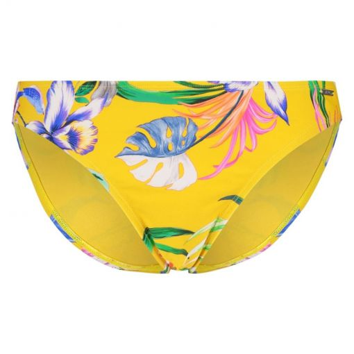 Shiwi dames zwem onderstuk Low Brief Sayulita - Geel