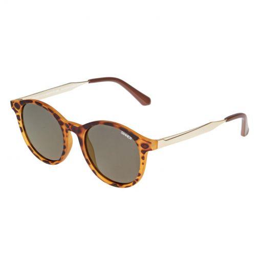 Sinner zonnebril Lomond - Bruin