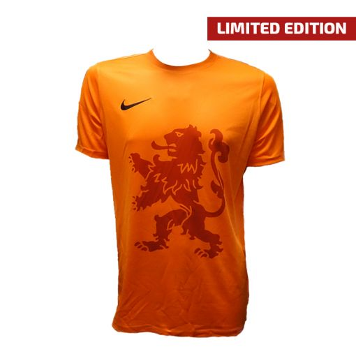 Nike junior Dri-Fit Park Big Kids Soccer - 804 Orange